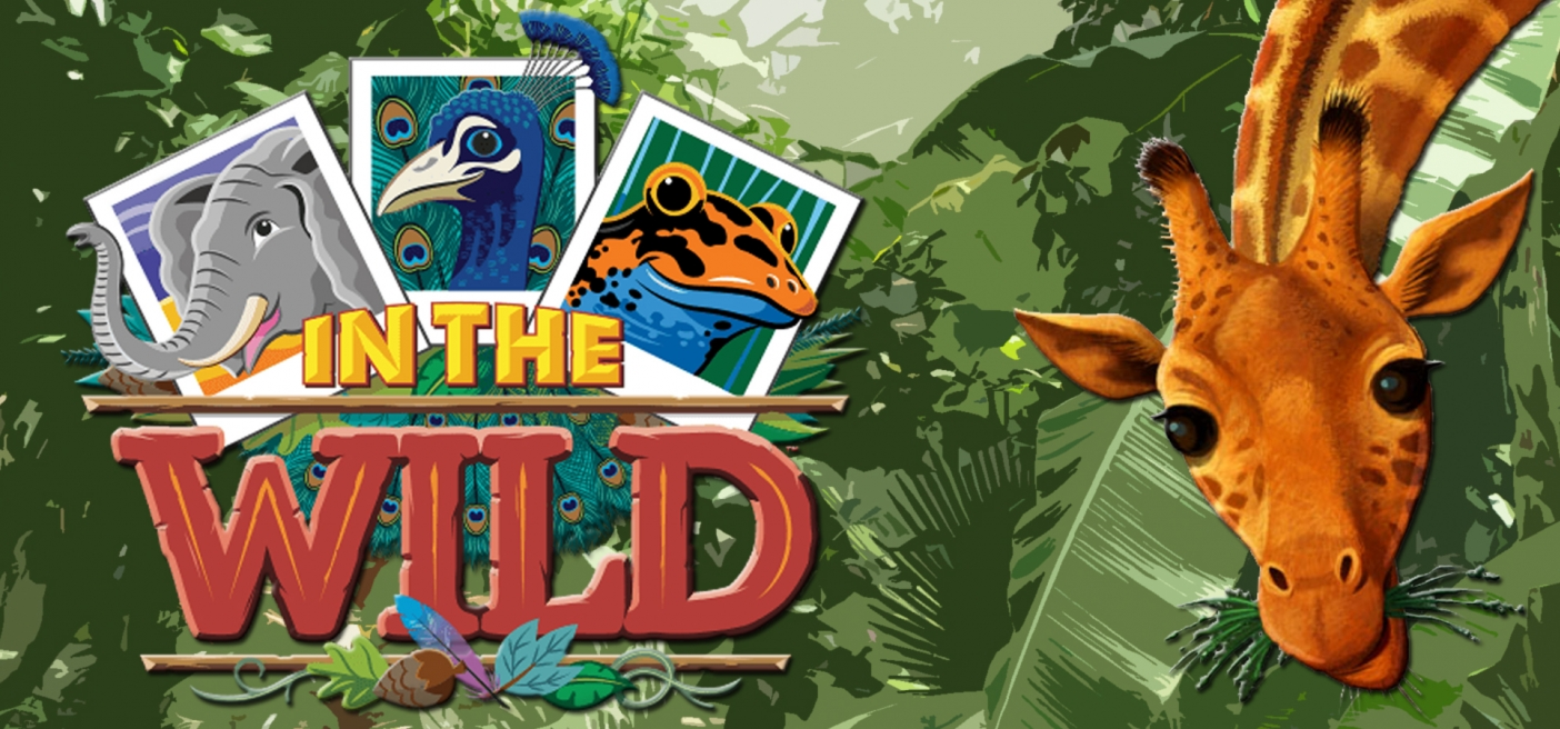 Wild Times at the VBS Director Preview | scbo org